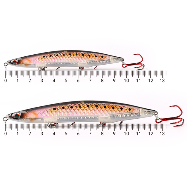 Kingdom 2019 New 3D Laser Sea Pencil Fishing Lures 100mm 125mm High Quality Floating & Slow sinking Fishing Wobblers Hard Baits 2