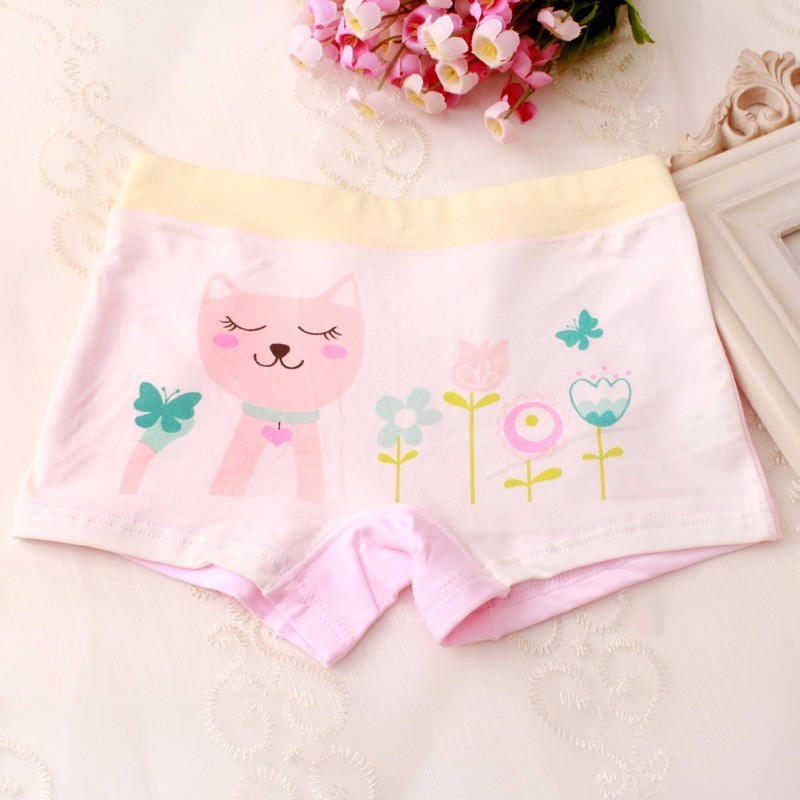 5pcs/lot 2019 New Fashion Kids Panties Girls Briefs Female Child Underwear Lovely Cartoon Panties Children Clothing Baby Clothe Fixing Prices According To Quality Of Products Underwear