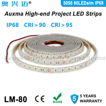 5050 60 LEDs/m LED Streifen, CRI95 CRI90 IP68, DC12V/24 V, 300 LEDs/Reel, 5 meter/Reel, Wasserdicht für Indoor & Outdoor Gebäude Dekoration