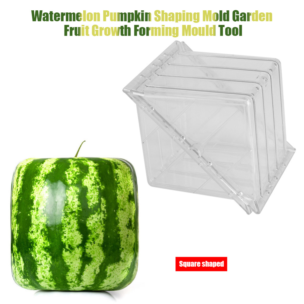 New Square Watermelon//Pumpkin Shaping Mold Garden Fruit Growth Forming Mould FC