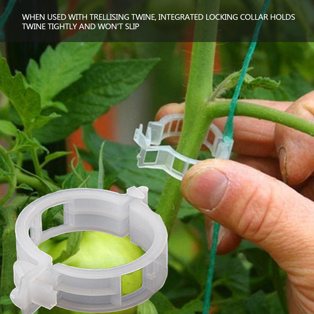 new 50pcs Garden Plant Support Clips Durable Vines Vegetable Fastener for Trellis Twine Greenhouse Tomato Plant Farming Clip