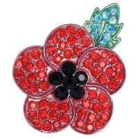 20pcs Red Poppy Brooch Lapel Pin Enamel Badge Ribbon Flowers Green Leaf Lest We Forget Legion Remembrance Day Peace