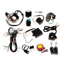 Electric Wiring Harness Wire Loom CDI Stator Assembly , Motorcycle Security Kit Alarm System For 70cc 90cc 110cc