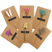 1Pcs DIY Dried Flower Birthday Greeting Cards Hot Stamping Handmade Message Birthdays Parties Invitation Card