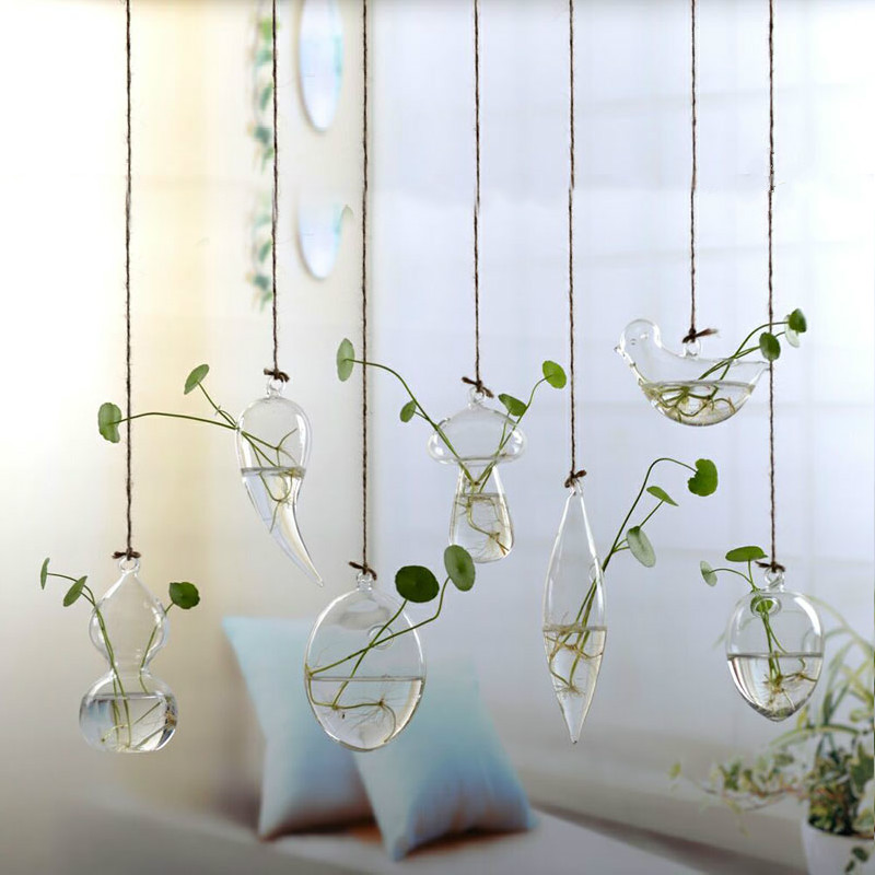 Clear Terrarium with Rope Made with Borosilicate Glass Ideal for Bedroom/Living Room and Office 3