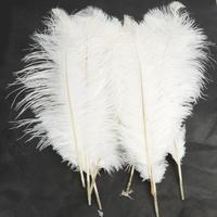 10pcs Natural White Ostrich Pure Feathers Plumes Carnival Costumes Home Party Festival Wedding Decorations Feather Crafts Set