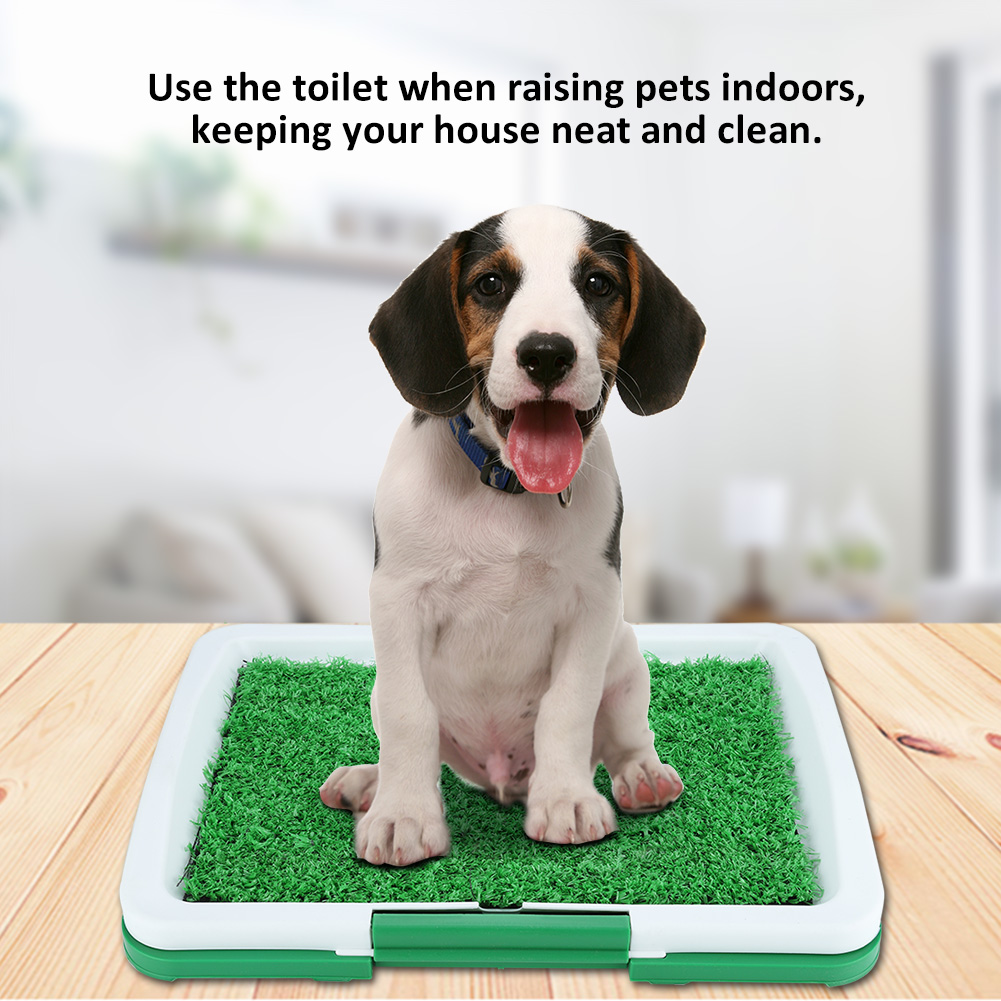 1 Pc Dog Pet Potty Plastic training tray Toilet Mat Grass Pad with Mesh+Collection Tray Home Indoor Restroom Toilet Pee Training|Litter Boxes| - AliExpress