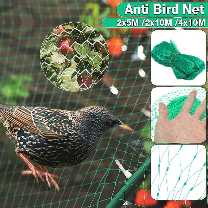4 x 10m Anti Bird Net Fishing Net Traps Protection Crops Fruit Tree Vegetables Flower Garden Mesh Protect Pest Control4 x 10m Anti Bird Net Fishing Net Traps Protection Crops Fruit Tree Vegetables Flower Garden Mesh Protect Pest Control