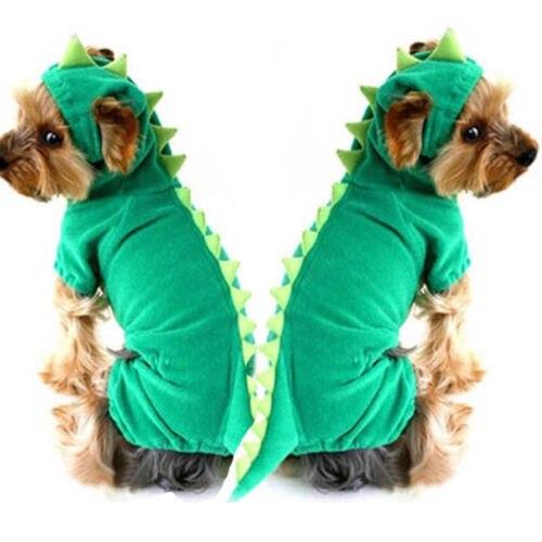 Dinosaur Costume 2