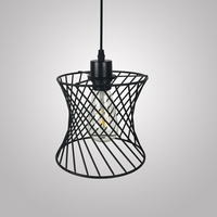 Vintage Industrial Loft Pendant Light Lamp Guard Wire Frame Bulb Iron Cover Cage