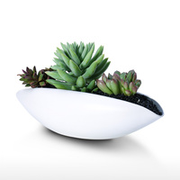 TOOARTS Ceramic Vase Succulent Planter Pot Decorative Centerpiece for Home or Wedding Modern Bowl Decor White Garden Pot