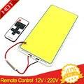 220x113mm 200 W Afstandsbediening Dimbare COB LED Panel Lamp met Dimmer 12 V LED Lamp panelen voor Indoor Outdoor Auto Verlichting