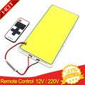 220x113mm 200 W Fernbedienung Dimmbare COB LED-Panel Licht Lampe mit Dimmer 12 V LED Lampe panels für Indoor Outdoor Auto Beleuchtung