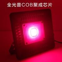 LED grow light floodlight 50W Full Spectrum for Indoor Greenhouse grow tent plants grow led light