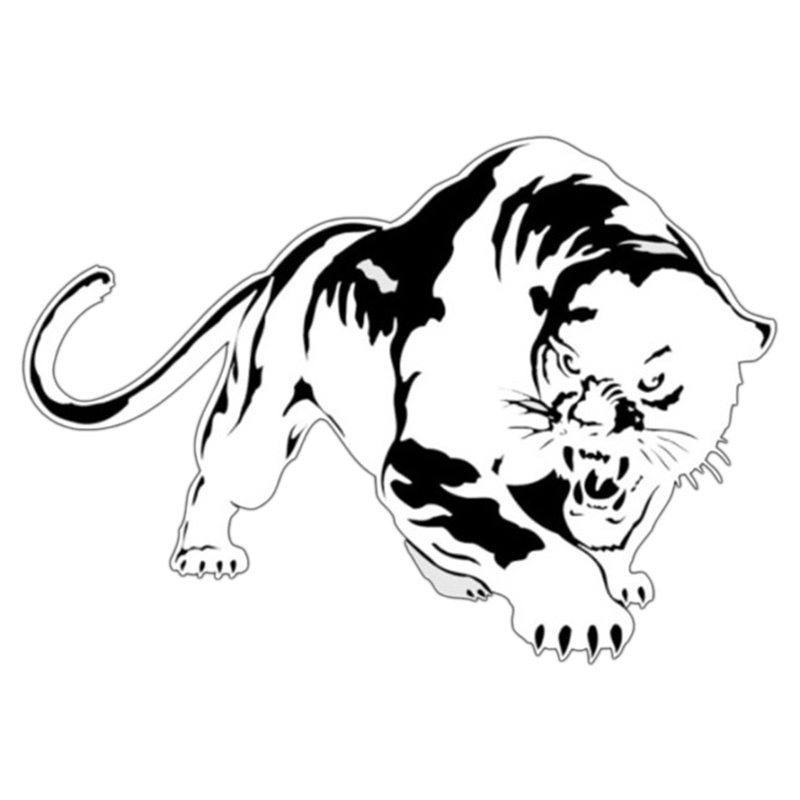 DHBH-Tiger Car Sticker Cool Decals Vinyl Waterproof Auto Tuning Styling Стикер