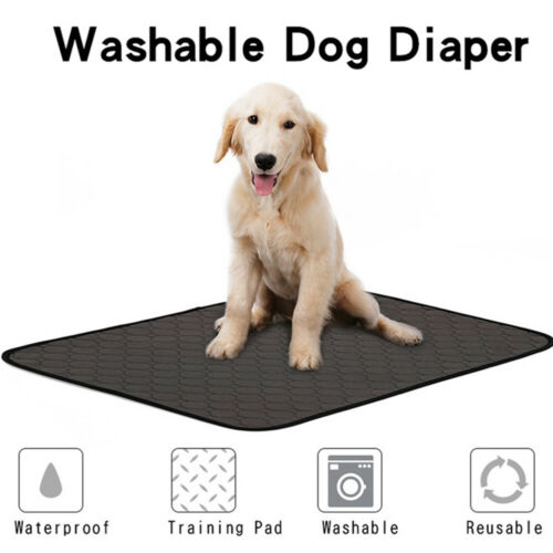 Enjoyable Us 4 27 18 Off Washable Incontinent Pads Incontinence Chair Pads Bed Pads Bed Underpads In Dog Accessories From Home Garden On Aliexpress Short Links Chair Design For Home Short Linksinfo