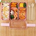 HILIFE Mittagessen Lebensmittel Behälter Mikrowelle Kühlschrank Safe Umweltfreundliche BPA Lunch-box mit Löffel Gabel Große Kapazität Doppel/Dreifach schicht