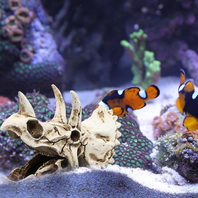 Dinosaur Triceratops Skull Aquarium Decoration  6