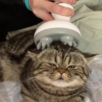 Charging Cat 3D Head Massager Omnidirectional