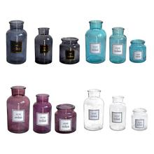Simple Fashion Glass Vase Nordic Style Frosted Hydroponic Photo Props Transparent Hot Stamping Home Decoration