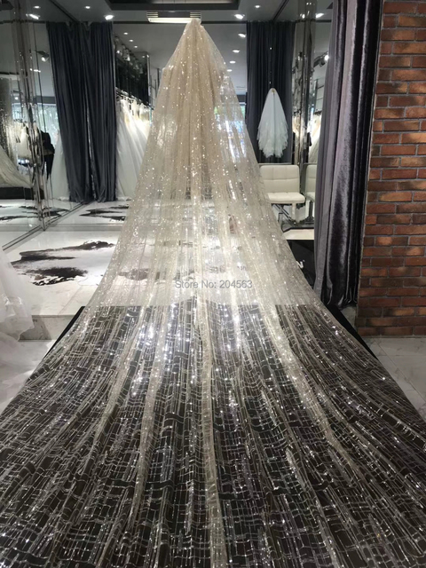 Champagne Wedding Veil Luxury Unique Long Bridal Veils with Comb AX