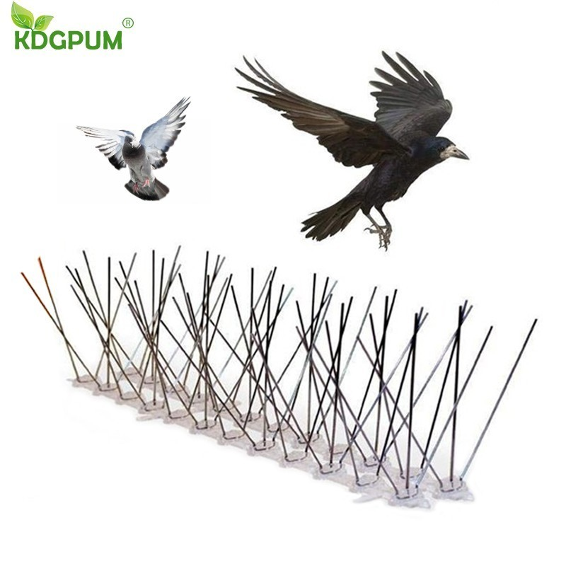 Hot Selling 6M Plastic Bird And Pigeon Spikes Anti Bird Anti Pigeon Spike For Get Rid Of Pigeons And Scare Birds Pest Control(China)