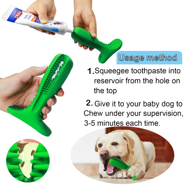 Chew Toothbrush Toy Dog  2