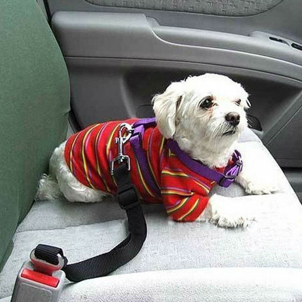 Car Pet Dog Seat Belt Puppy Car Seatbelt sticker For <font><b>Volvo</b></font> Xc60 <font><b>S60</b></font> s40 S80 V40 V60 v70 v50 850 c30 XC90 s90 v90 xc70 s70 image