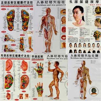 7 sztuk zestaw angielski ręka i stopa i ucho i ciało Meridian punkty ludzkiej ścienna tablica kobieta mężczyzna masaż akupunkturowy punkt mapa Flipchart tanie i dobre opinie leten Acupuncture Meridian Points Poster Approx 46x63cm 7 Pcs Approx 210g Accupuncture Chinese And English