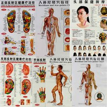 7Pcs/Set English Hand&Foot&Ear&Body Meridian Points Of Human Wall Chart Female /Male Acupuncture Massage Point Map Flipchart(China)