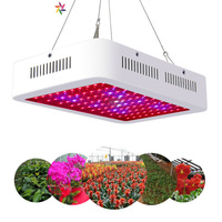 Fast Growing Lamps LED Grow Light 1000W AC85 265V Full Spectrum Plant Lighting Fitolampy For Plants Flowers Seedling Cultivation