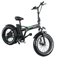 Europe Warehouse 2 Wheel Fat Tire 500W Electric Bike With 48V 15ah Removable Battery for Adult Electric Bicycle Cycle