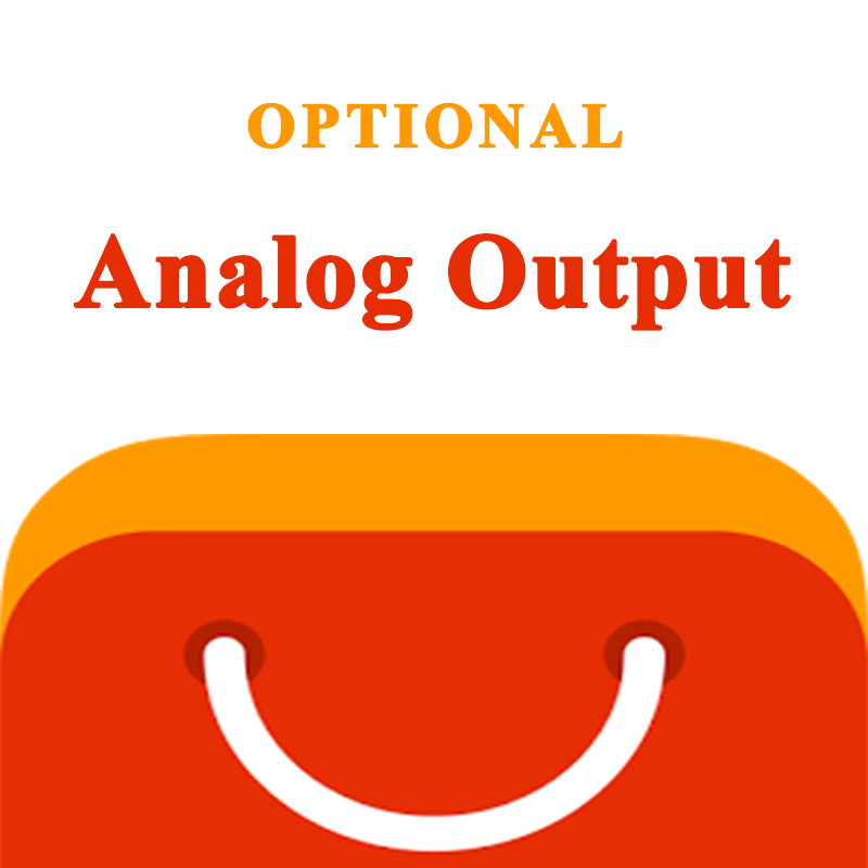 AO Analog Output (optional)