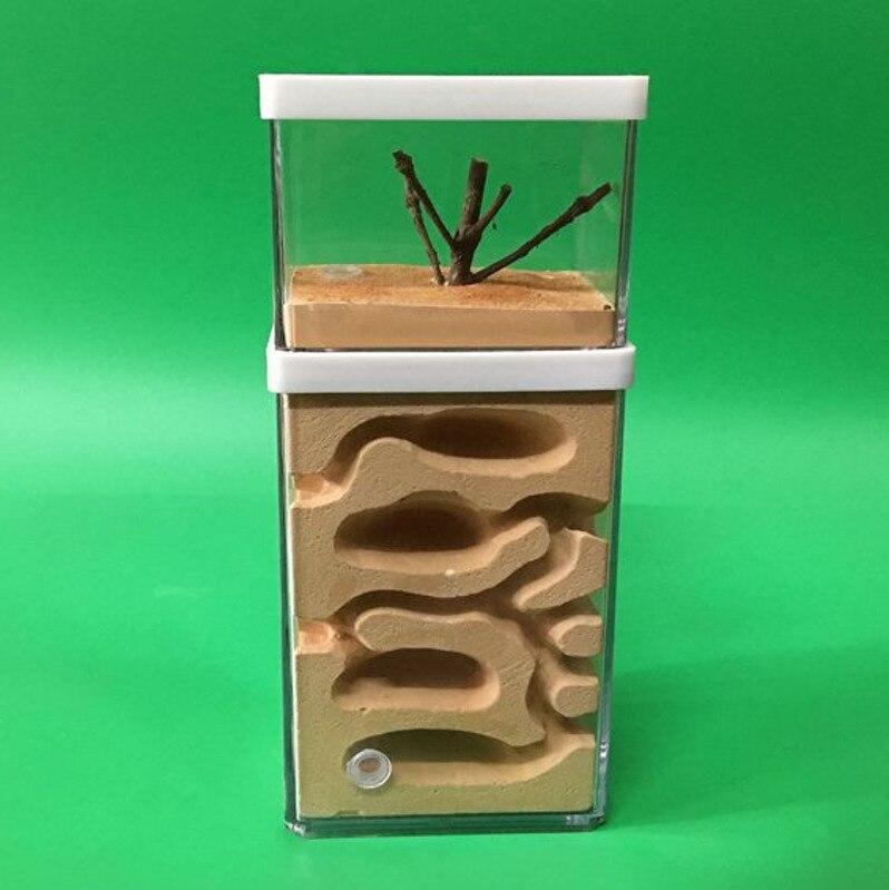 Fourmi ferme avec aire d'alimentation Pc fourmis château animaux Cages insecte maison atelier insecte aménagement paysager logement atelier CW127
