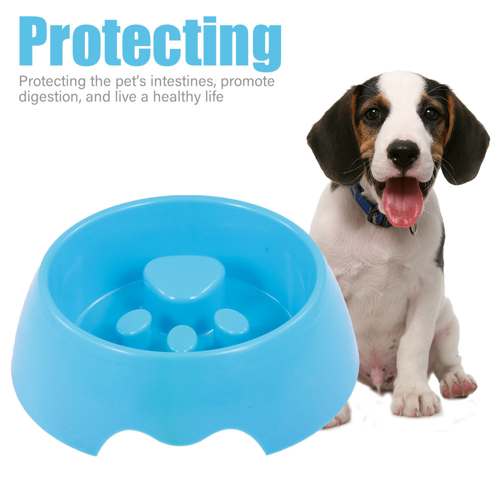 Bowls for dogs Feeder Pet Slow Food Bowl Dog Food Bowl Interactive Food Fun Slow Dog Bowl Preventing Choking Healthy Design