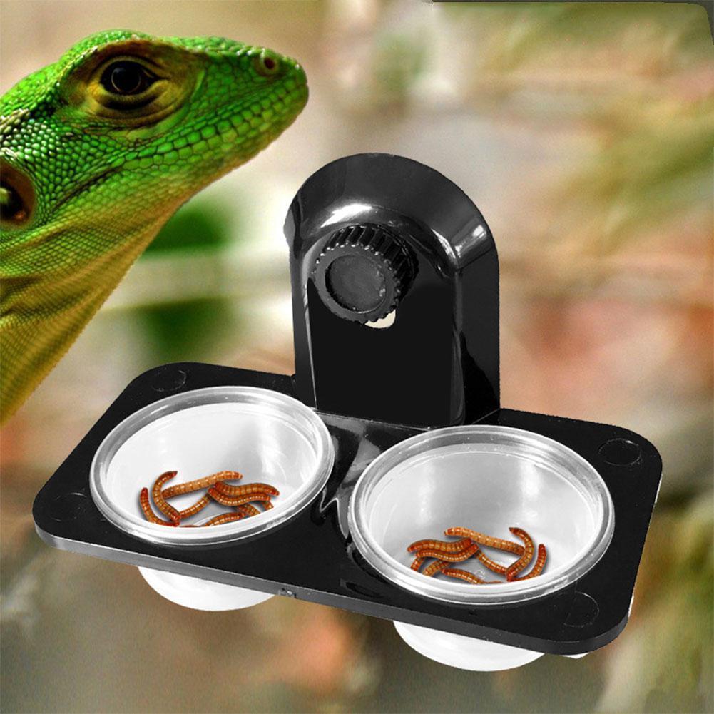 Transparent Reptile Feeding Dish Food Water Bowl for Reptiles Amphibians