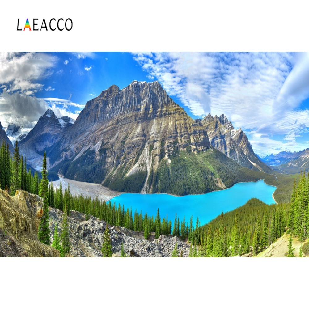 Laeacco Nature Scenic Water Mountain Grass Backdrop Photography Backgrounds Customized Photographic Backdrops For Photo Studio in Background from Consumer Electronics