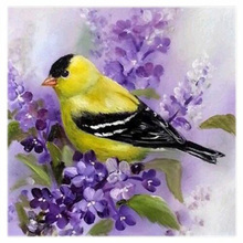 Новая-маленькая птица 5D алмазная вышивка живопись Сделай Сам Вышивка крестом Искусство ремесло