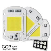 Smart IC Driver 20W 30W 50W LED Bulb Floodlight COB Chip Input Integrated A 220V Light The Night Decorate Your Home(China)