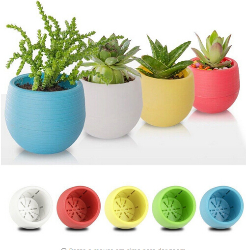 Flower-Pot Planter Desktop Office-Decor Garden Plastic Colourful Mini Home Round