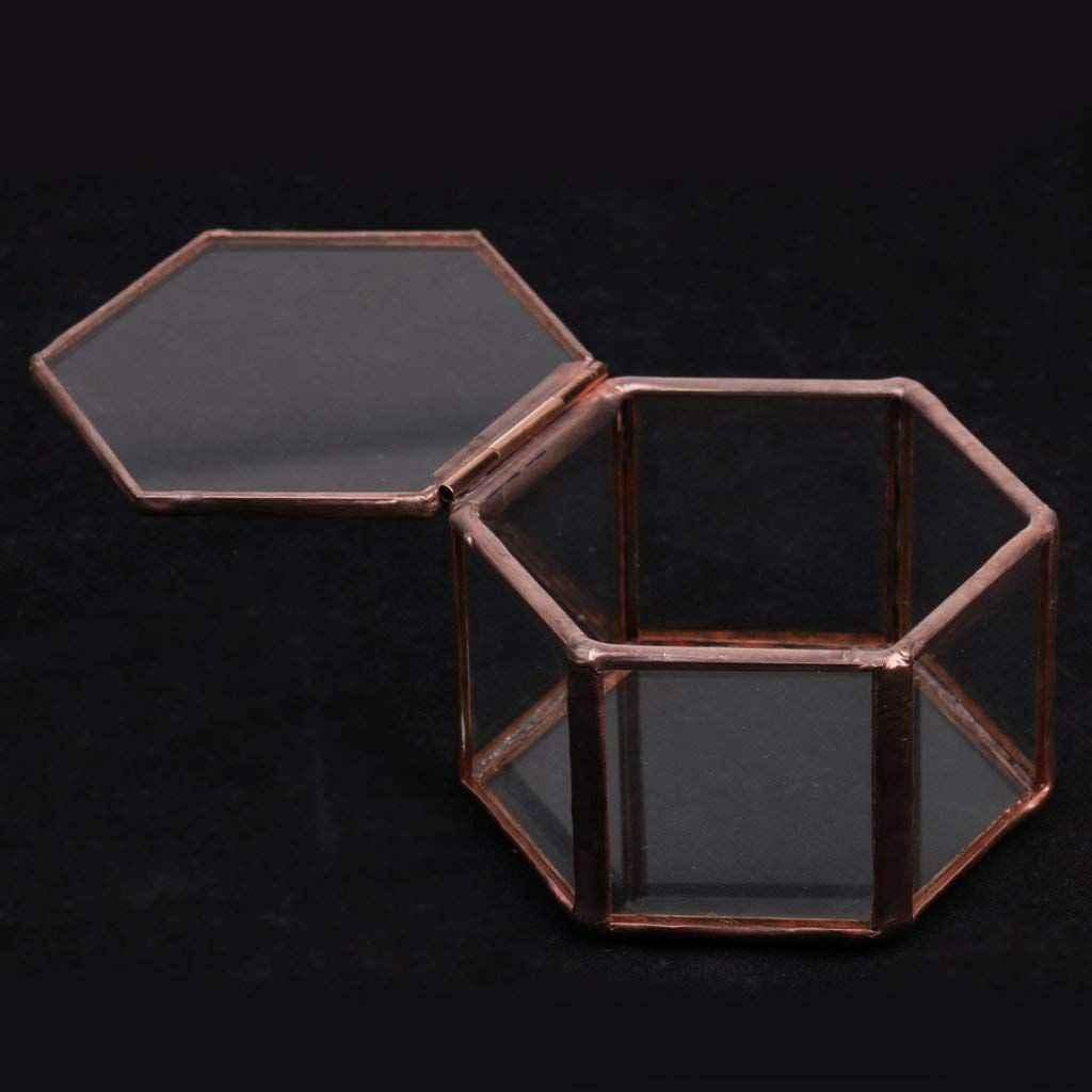 Novo-Geométrico Terrário De Vidro Caixa de Jóias Caixa de Vidro Planta Suculenta Pote Deco Forma de Hexágono