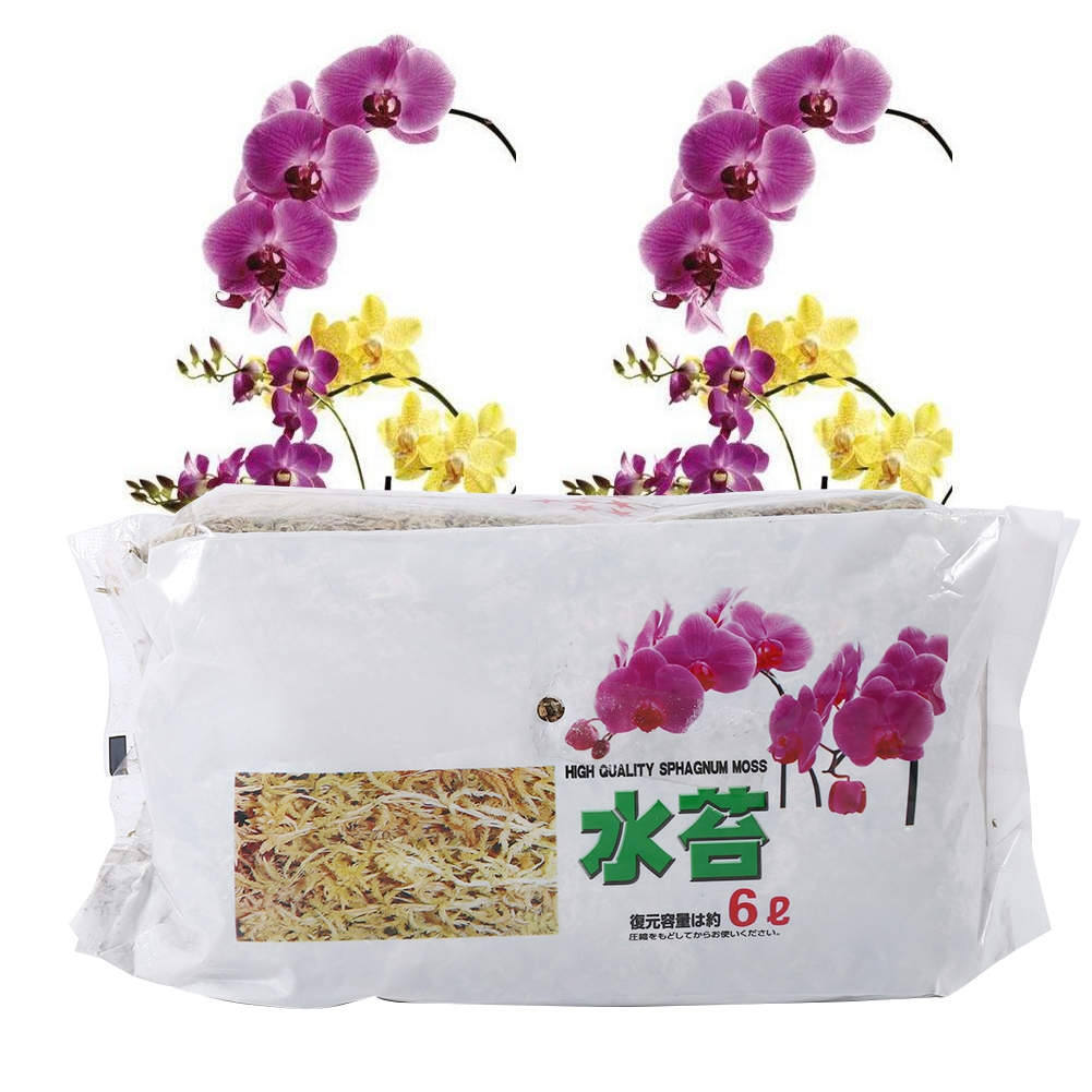 Organic Fertilizer Orchid Garden-Supplies Sphagnum Moss Nutrition Phalaenopsis For 6L