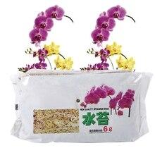 6л садовый сфагнум мох увлажняющее питание органическое удобрение для фаленопсиса орхидеи Садовые принадлежности удобрение