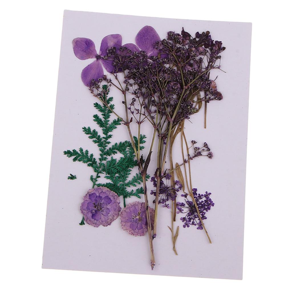 12 Natural Pressed Flower Embellishment Wedding Invitation Card Making DIY