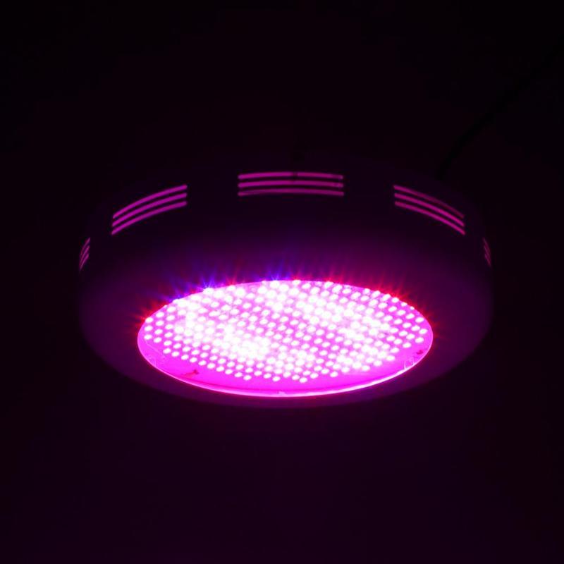 LED bonne affaire élèvent la lumière SMD5730 IR UV LED à spectre complet plante croissance plante verte lumière imperméable à l'eau