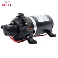 DP 160s ac 220v Water Pump High Pressure Diaphragm Pump 9.5m lift Submersible pumps For Chemical 160psi