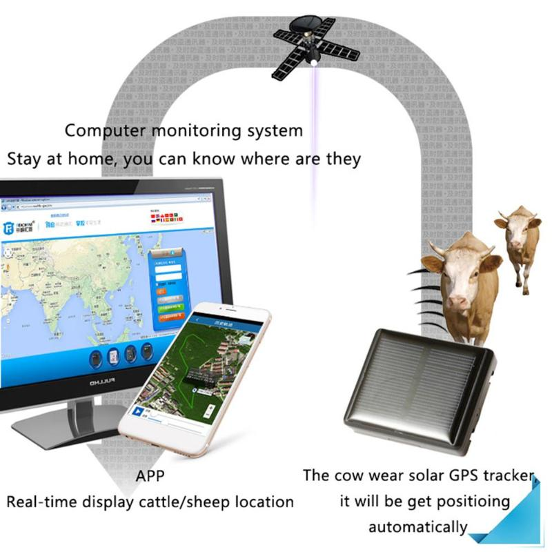 Traqueur solaire imperméable de GPS d'animal familier en temps réel SOS V26 chien localisateur de chats localisateur une clé Anti-perte traqueur alarme GPS traqueurs