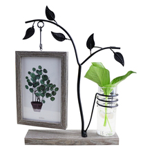 opening promotion-Features With Hydroponic 6 Inch Hanging Double-Sided Photo Frame Creative Personality Decorative Table Craft