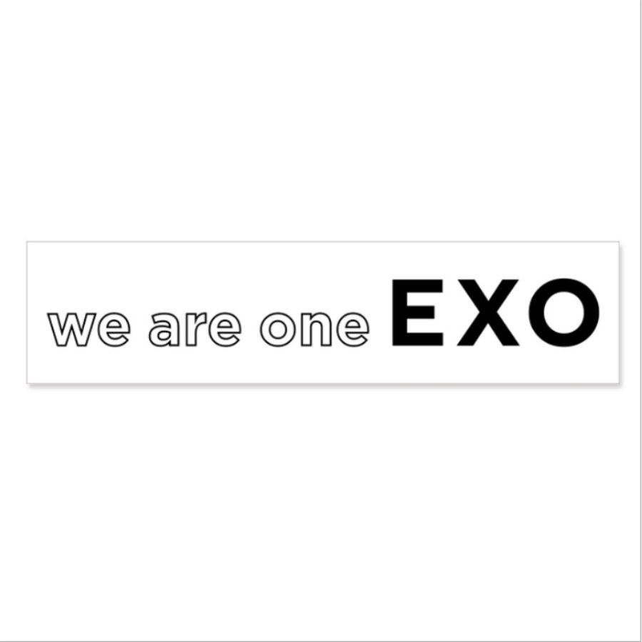 US $2 12 |Kpop EXO We Are One Airport Fabric Banner Tempo Album Hand Holder  Slogan Poster -in Jewelry Findings & Components from Jewelry & Accessories