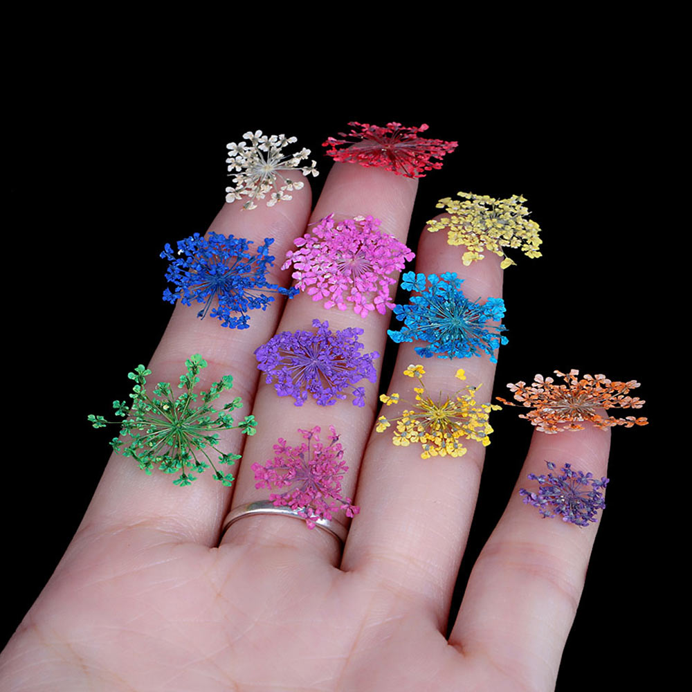 12 Color 3D Decoration Real Dry Dried Flower Nail Art Sticker for Tips UV Gel Acrylic Nail DIY Art Tips Nail Art Decorations in Rhinestones Decorations from Beauty Health